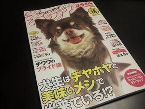 チワワ 超小型犬