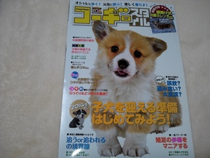 ウエルシュコーギー 犬雑誌