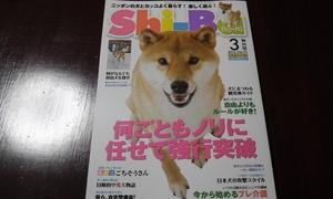 柴犬 専門誌
