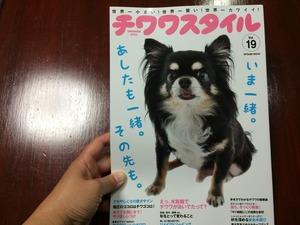 チワワ 犬種専門誌 超小型犬