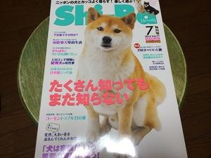 シーバ 犬の雑誌