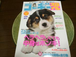 コーギースタイル 犬種 犬専門誌