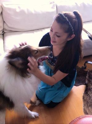 愛犬のマッサージ ストレス対処法