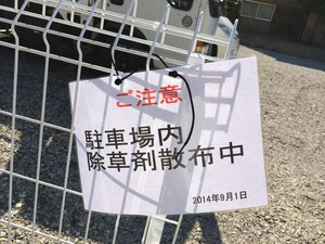 愛犬 散歩コース 埼玉