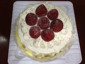 誕生日ケーキ 愛犬 プレゼント