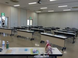 市役所 保健所 犬のしつけ教室