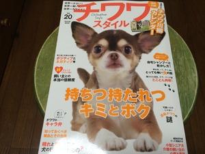 愛犬雑誌 いぬの本 しつけ