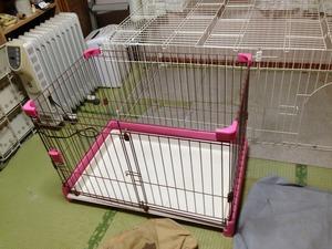 犬の居場所 躾 坂戸