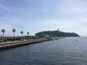 江の島 犬散歩 犬と観光