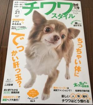 チワワスタイル 犬雑誌 しつけ