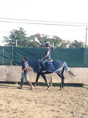 ドッグトレーナー 乗馬 体験