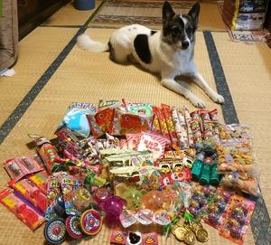 駄菓子 犬用 しつけ菓子