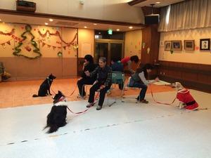 犬と一緒にゲーム クリスマス会