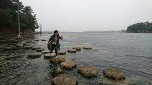 石川県 犬のしつけ 戸田