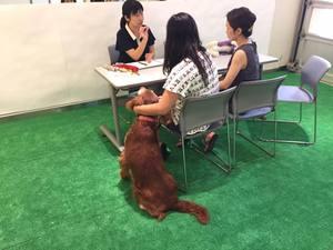 レクサス 犬連れイベント