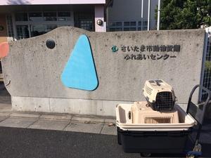 さいたま市動物愛護ふれあいセンター 教室講師