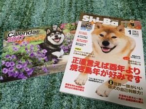 犬のカレンダー 犬雑誌モデル