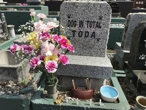 愛犬のお墓