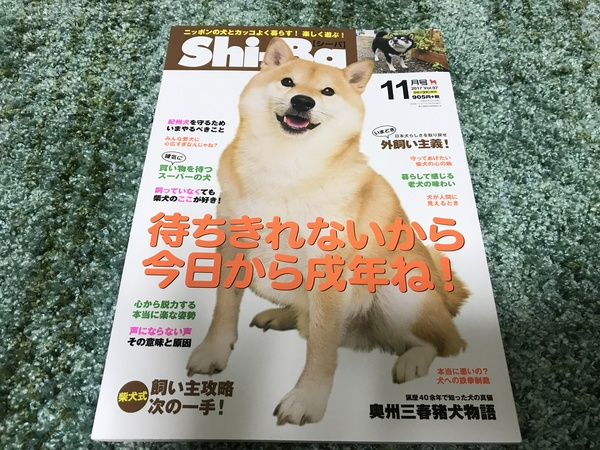 Shi-Ba 11月号発売です!