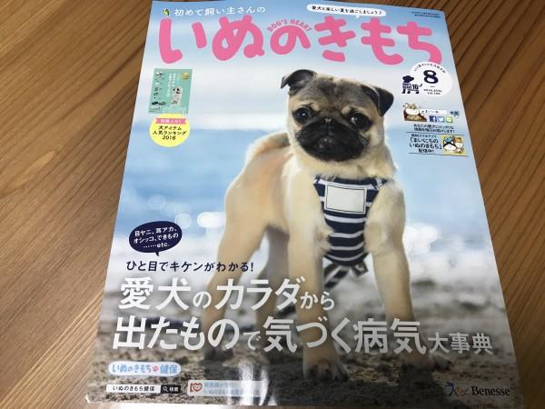 いぬのきもち 8月号発売です!